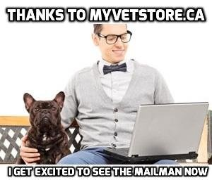 thanks to my veststore.ca
